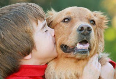 Bambino che gioca con cane